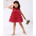 Sleeveless Party Wear Frock Floral Embroidery