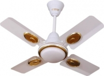 Sameer Ruby 24 inch High speed 4 mm 4 Blade Ceiling Fan