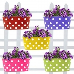 Trust Basket Dotted Oval Railing Planters ( Pack of 5)